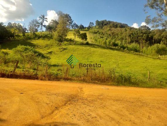 Terreno à venda, Minas Gerais, Toledo