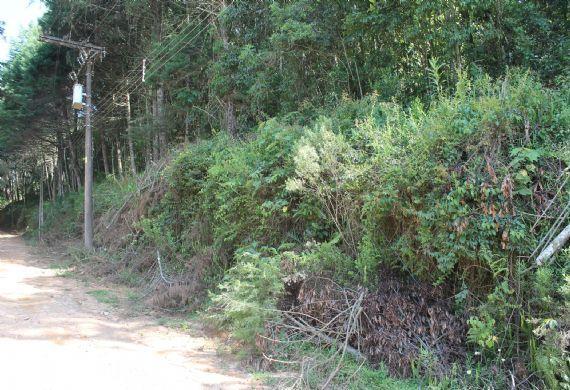 Terreno à venda, Jardim das Montanhas, Monte Verde                                (Camanducaia)