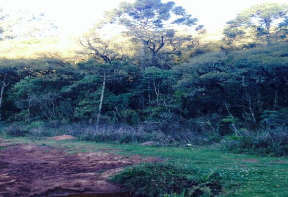 Terreno à venda, Jardim Monte Verde III,