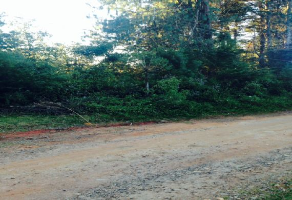 Terreno à venda, Parque das Araucárias,
