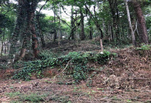Terreno à venda, Jardim da Represa, Camanducaia