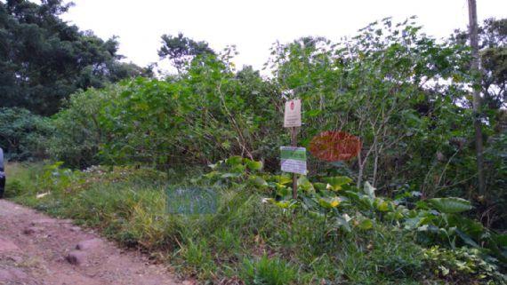 Terreno à venda, Roseira, Mairiporã