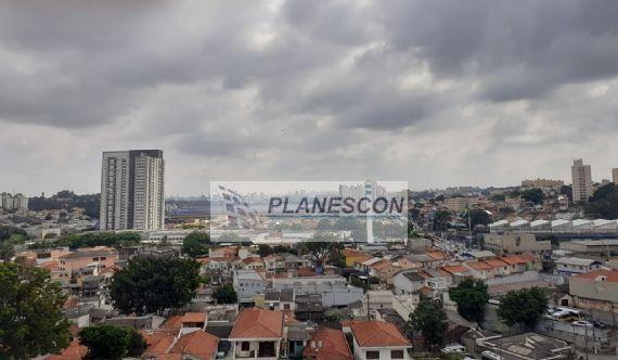 Apartamento para alugar, Ferreira, SÃO PAULO